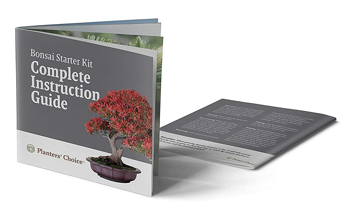 Planters Choice Bonsai Starter Kit - The Complete Kit to Easily Grow 4 Bonsai Trees from Seed with Comprehensive Guide & Bamboo Plant Markers - Unique Gift Idea (Bonsai)