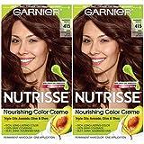 Garnier Hair Color Nutrisse Nourishing Creme, 413