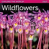 2015 Wildflowers Mini Wall Calendar Ziga Media, LLC