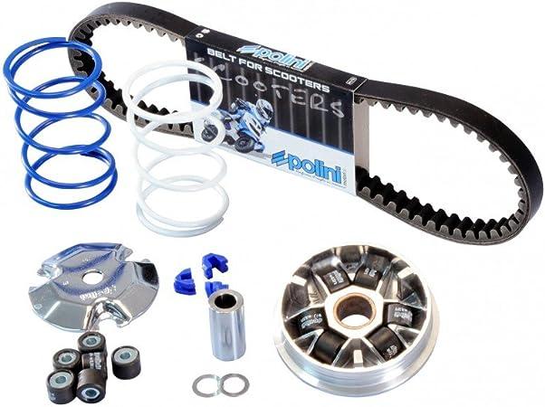 Variator Polini Speed Control Eco Kit Für Peugeot Variator Keilriemen Gegendruckfedern 2xgewichte Auto