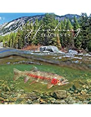 What Fly Fishing Teaches Us 2022 Wall Calendar