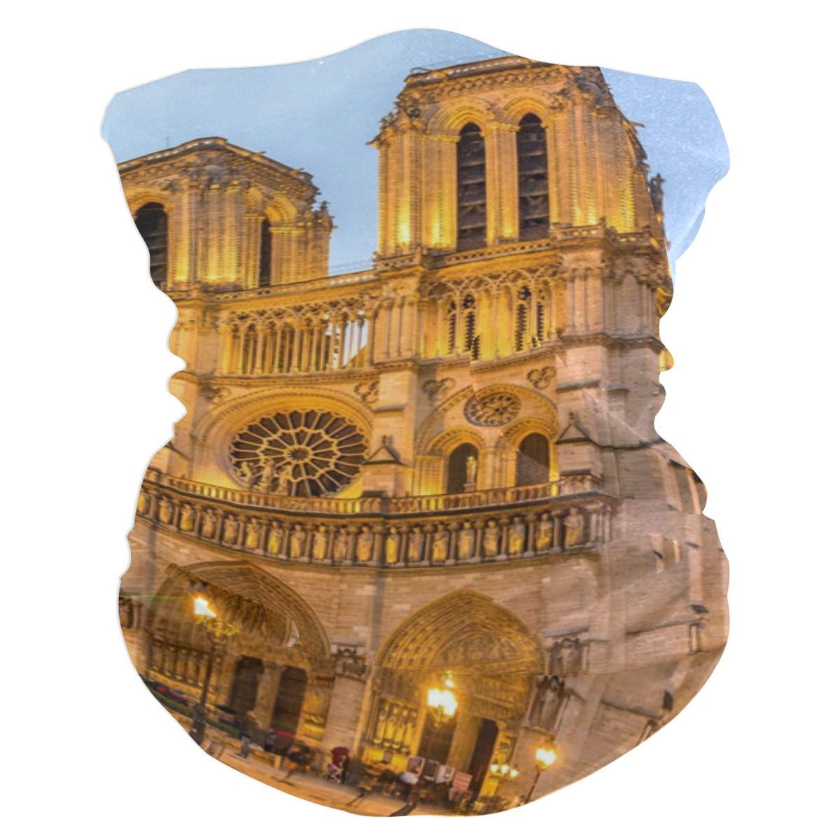 Notre Dame De Paris...