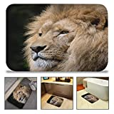 QIYI Bath Mat Rug Super Soft Non-Slip Machine Washable Quickly Drying Antibacterial,For Office Door Mat,Kitchen Dining Living Hallway Bathroom 16'' W x 24'' L (40 x 60 CM) -Pensive King Lion