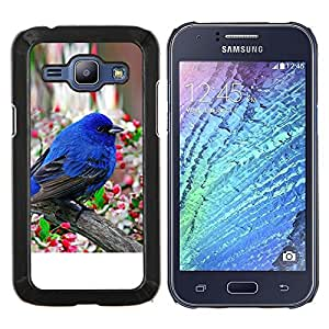 TECHCASE---Cubierta de la caja de protección para la piel dura ** Samsung Galaxy J1 J100 ** --Robin Pájaro azul de la primavera flor de manzano
