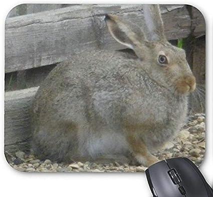 Alfombrilla de ráton del juego alfombrilla de ratón Conejo precioso Mousepad Serie Conejo de primavera Alfombrilla De Ratón Conejo de conejito ...