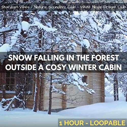 - Snow Falling in the Forest Outside a Cozy Winter Cabin: One Hour (Loopable)