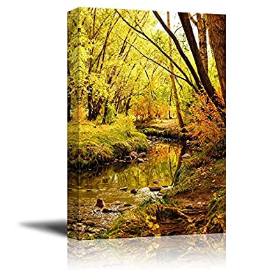 Classic Design, Incredible Picture, Beautiful Scenery Autumn Landscape with Gentle Creek Through a Forest Wall Decor