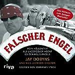 Falscher Engel: Mein Höllentrip als Undercover-Agent bei den Hells Angels | Jay Dobyns,Nils Johnson-Shelton