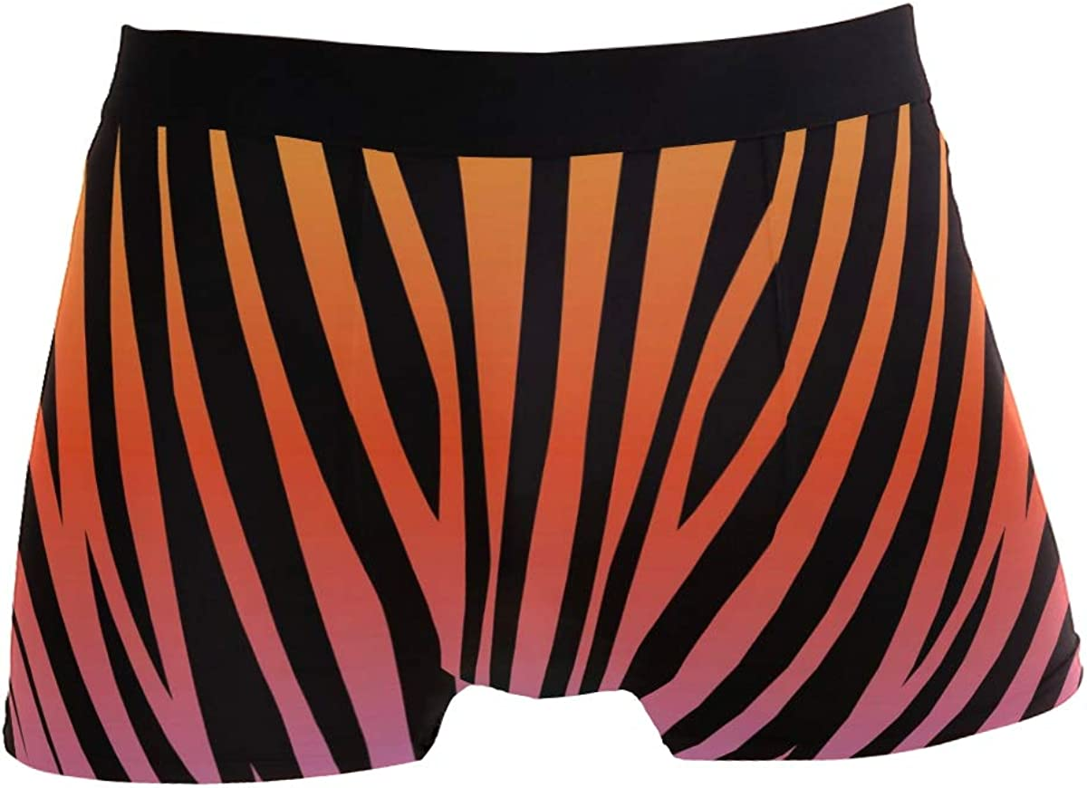 Animal Print with Feathers Trunks for Men Boxer Briefs Mens Underwear