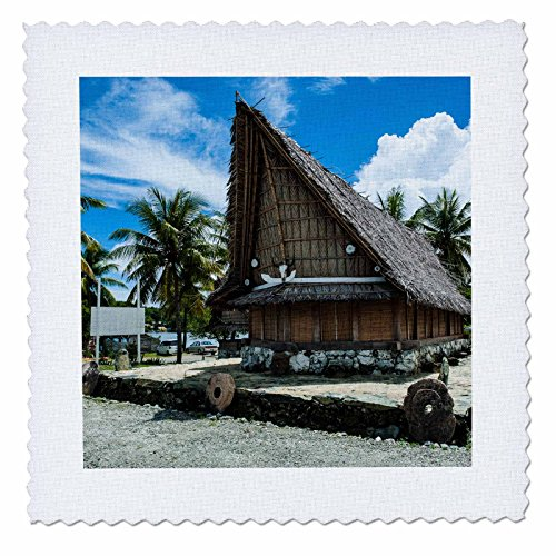 3dRose Danita Delimont - Micronesia - Traditional house with stone money in front, Island of Yap, Micronesia - 14x14 inch quilt square (qs_250433_5) (Village Hut In)