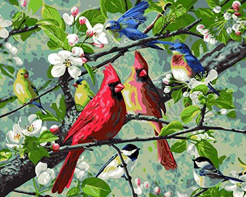 Plaid Enterprises, Inc. 22599 Songbirds Paint by Number Kit, Multicolor
