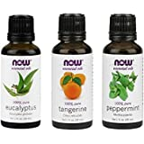 Now Foods Essential Oils Mental Focus 3-Piece Set (Eucalyptus, Tangerine, Peppermint)