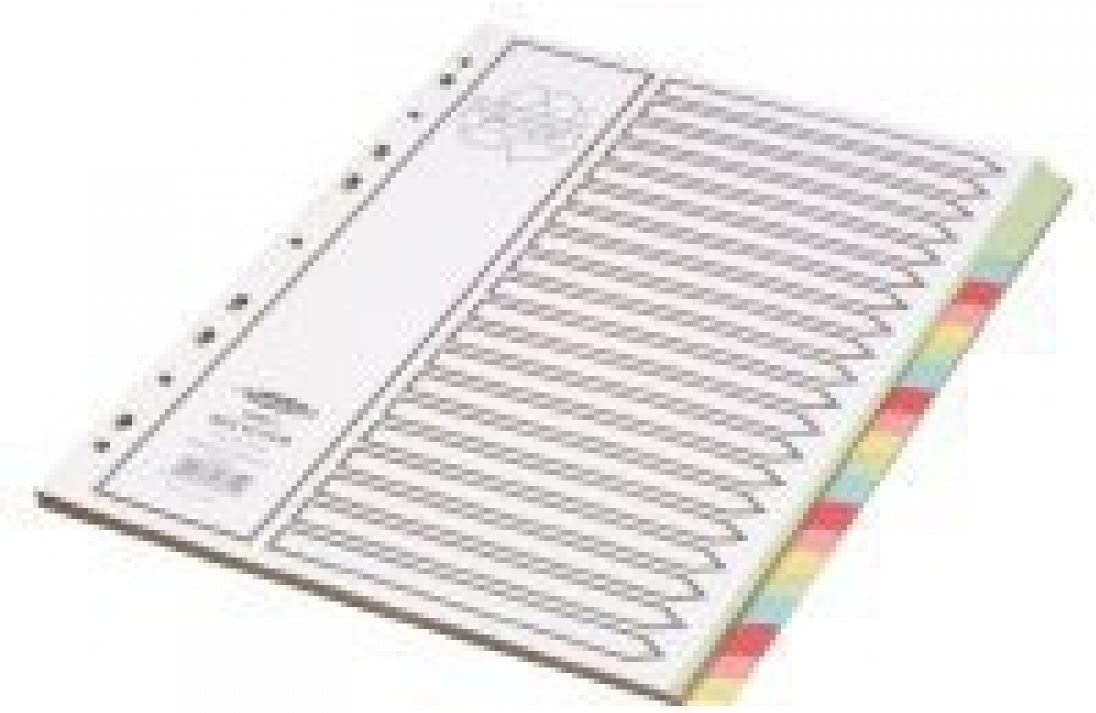 Concord Recycl/é Intercalaires 230 micron Cartes avec Color/é onglets 20-Part A4 Blanc Ref 48699