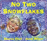 No Two Snowflakes, Sheree Fitch, 1551432277