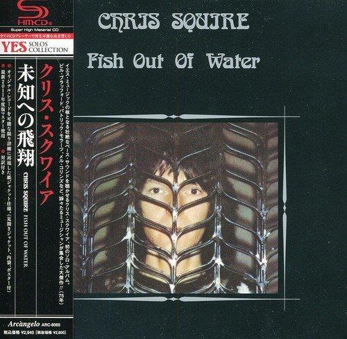 未知への飛翔 - FISH OUT OF WATER                                                                                                                                                                                                                                                    <span class=
