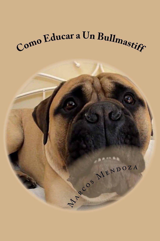 Download Como Educar a Un Bullmastiff (Spanish Edition) pdf