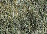 Ghillie Blanket 5' X 9' (Woodland)