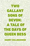 img - for Two Gallant Sons of Devon: A Tale of the Days of Queen Bess book / textbook / text book