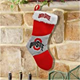 Ohio State 2009 Colorblock Stocking