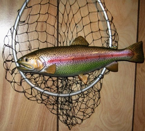"Land & Sea Taxidermy 13"" Fiberglass Rainbow Trout Wall Mount from Land & Sea"