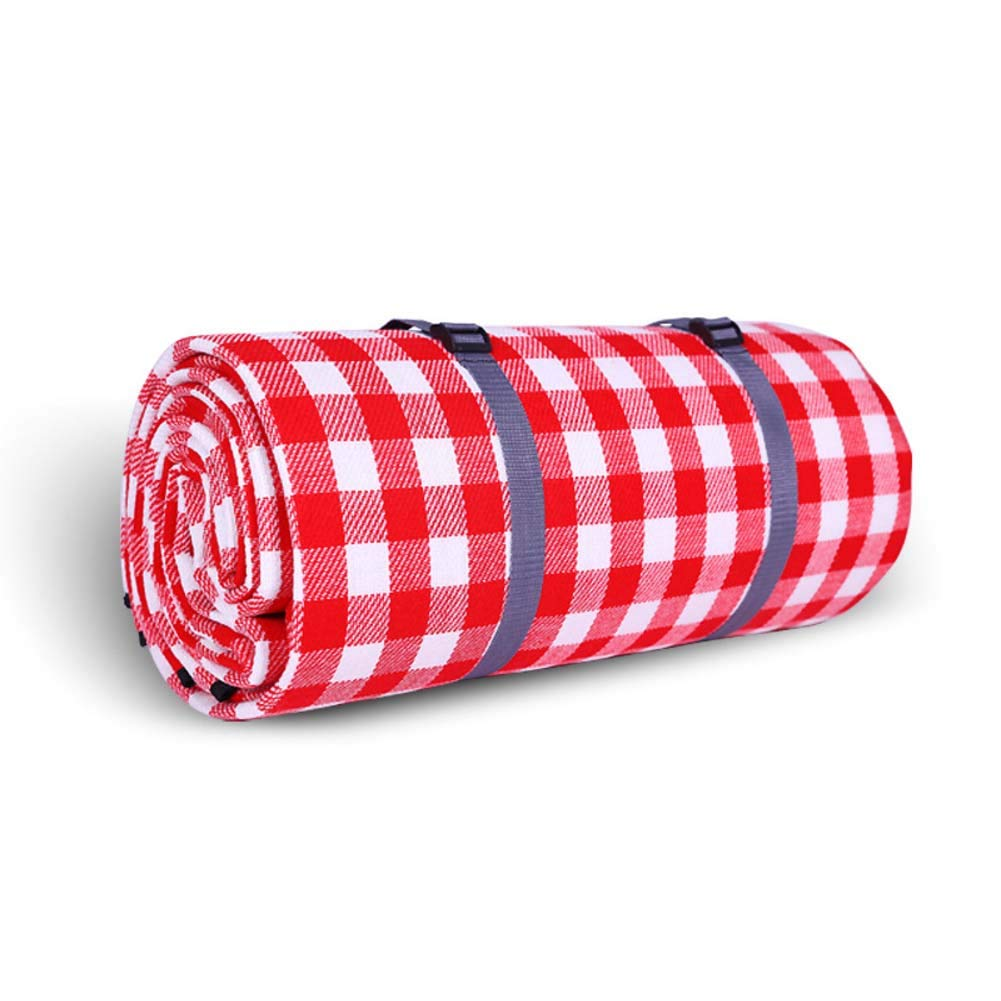 DADAO Outdoor Blanket Waterproof Windproof,Extra Large - Family Size, Sand-Proof, Compact and Foldable Mat, Best for Picnic and Travel,1,300x300cm