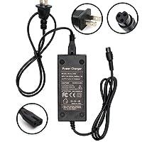Wyness - Cargador de batería para Scooter eléctrico (100-240 V, 50/60 Hz, Enchufe de 8 mm, 42 V, 2 A)