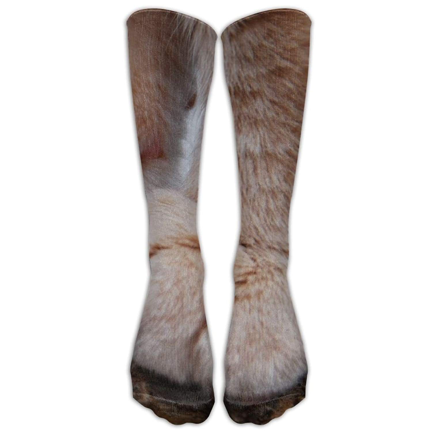 Cat Paws Closeup Macro Depth Of Field Animals Nature Athletic Tube Stockings Women Men Classics Knee High Socks Sport Long Sock One Size