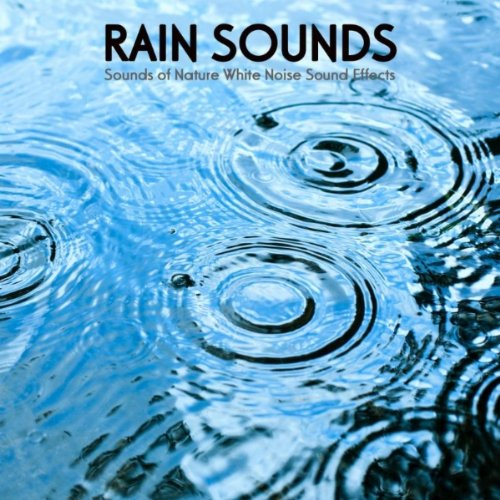 Rain Sounds - Rain Sound Ambience Soothing Natural Music for Midfulness Meditation, Relaxation, Spa, Yoga, Massage, Deep Sleep, Sound Therapy - Rain Mp3