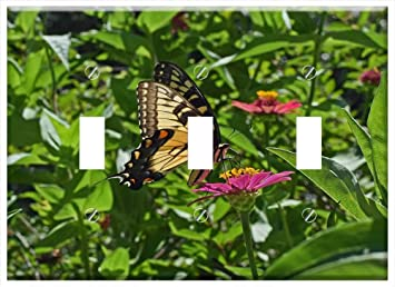 Switch Plate Triple Toggle Common Swallowtail On Zinnia Butterfly Insect Amazon Com