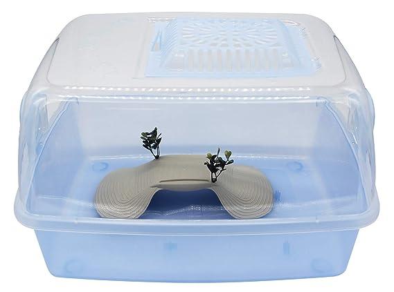 BPS Tortuguera Isla Tanque Abierta Plástico para Tortugas Acuaterrario de Agua 2 Tamaños para Elegir (XXL) BPS-4220: Amazon.es: Productos para mascotas