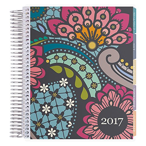 Erin Condren 12 month 2017 LifePlanner - Paisley Horizontal Colorful
