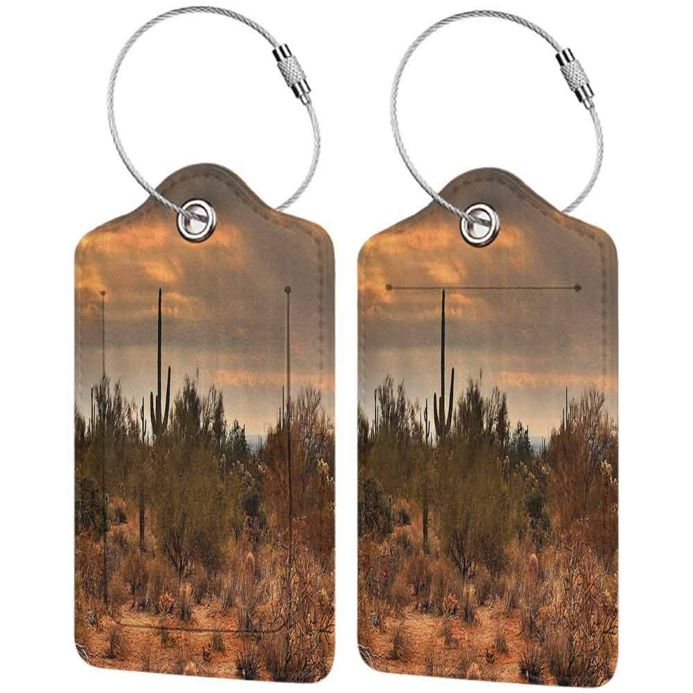 Multi-patterned luggage tag Saguaro Cactus Decor Dramatic Shady Desert View with a Storm Cloud Approaching Western Arizona Photo Double-sided printing Orange Green W2.7 x L4.6