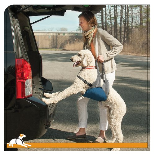 Kurgo Up and About Dog Lifter for Support – Pet Lift Harness Helps Elderly & Disabled Dogs