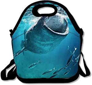 Insulated Lunch Bag for Women Men Diving Blue Cebu Whale Shark Eating Fish Wildlife Nature Giant Mouth Open Tropical Design Reusable Girls Lunch Tote for Office School or Work