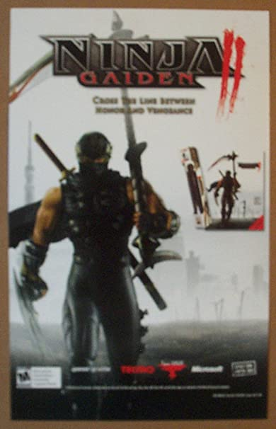 Ninja Gaiden Wall Reusable Graffix