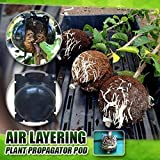 CIVIKY 5pcs Plant Rooting Ball, Plant Root Growing