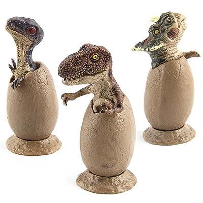 Jollymap 3pcs Dinosaur Era Predator Velociraptor In Egg Dinosaur Figurine Hatchling Collectible Sculpture: Toys & Games