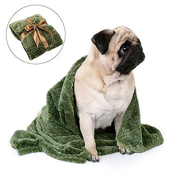 FONLAM Manta para Perro Gato Cachorro Colchón Manta para Cama Perro Mascota Suave Invierno Grueso Calentito (100 * 70cm, Verde): Amazon.es: Productos para ...