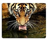 Animal Wildlife Tiger Drinking Bengal Cat Face paderno spiralizer mousepad 7.5*9 inch by CHAVONElee