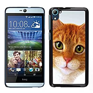 All Phone Most Case / Lindo Foto Caso Duro Carcasa Estuche de protectora / Hard Case for HTC Desire D826 // Cymric Gato American Shorthair