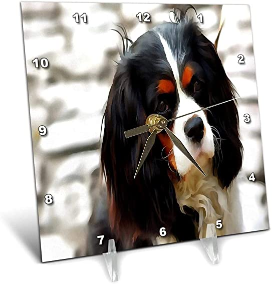 3dRose 3D Rose Portrait of A King Charles Cavalier Spaniel – Desk Clock, 6 by 6-inch dc_245528_1