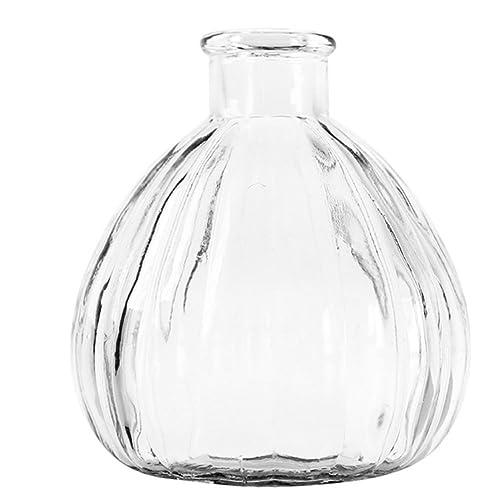 Ruikey Transparente Pequeño florero de Cristal de la chuchería Creativo Pequeño secó la Boca del florero
