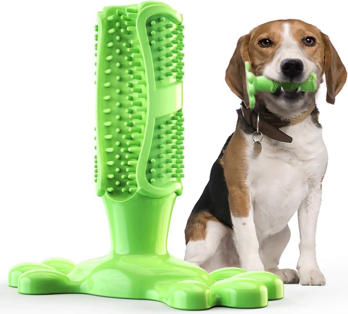 LAOSHIZI Cepillos de Dientes Juguetes Perro Masticar Cuidado Bucal Dental Brushing Stick Verde