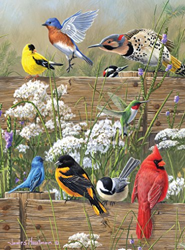Buffalo Games Hautman Brothers: Songbird Menagerie - 1000 - 1000 Piece Kids Puzzle