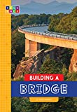 Building a Bridge (Sequence Amazing Structures)