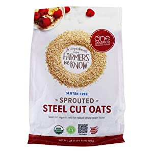ONE DEGREE ORGANIC FOODS Organic Oats Sprouted Steel Cut 24Oz, 24 OZ