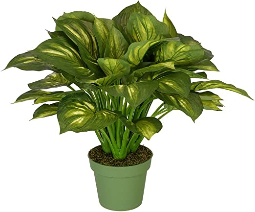 Amazon Com House Of Silk Flowers Artificial Large Hosta