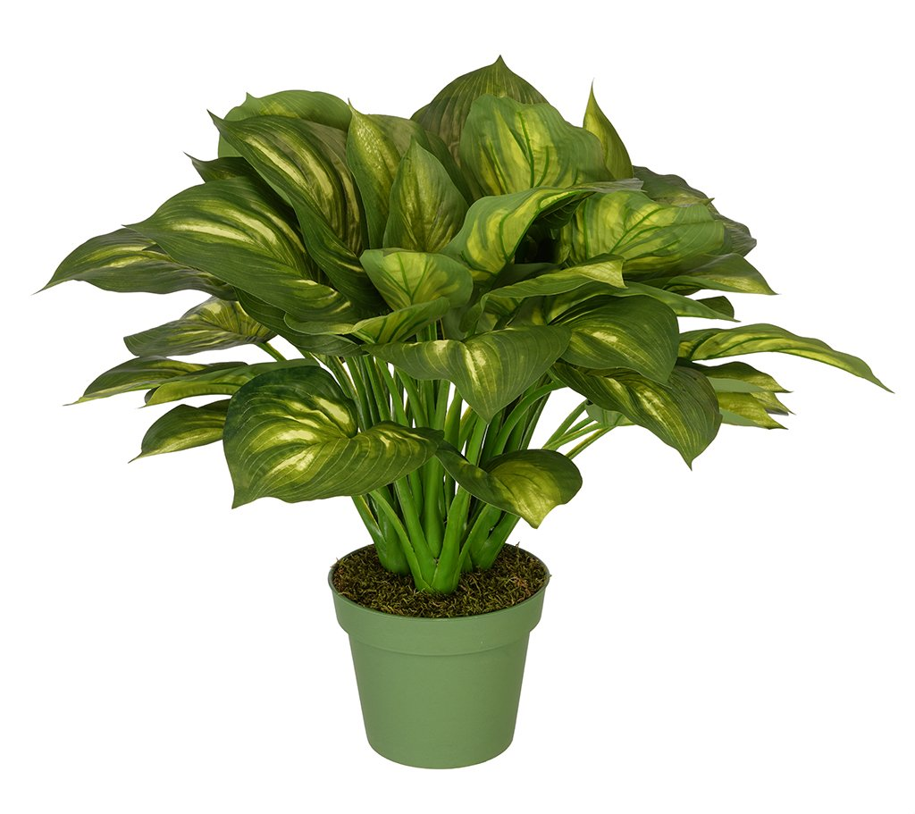 House of Silk Flowers Artificial Large Hosta
