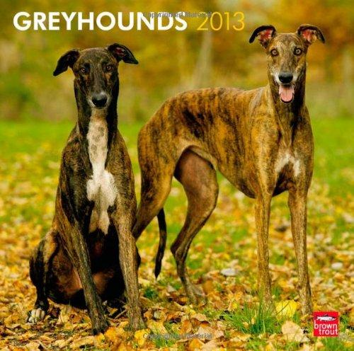 Greyhounds 2013 - Große Englische Windhunde - Original BrownTrout-Kalender