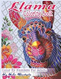 Llama Coloring Book - Color By Numbers For